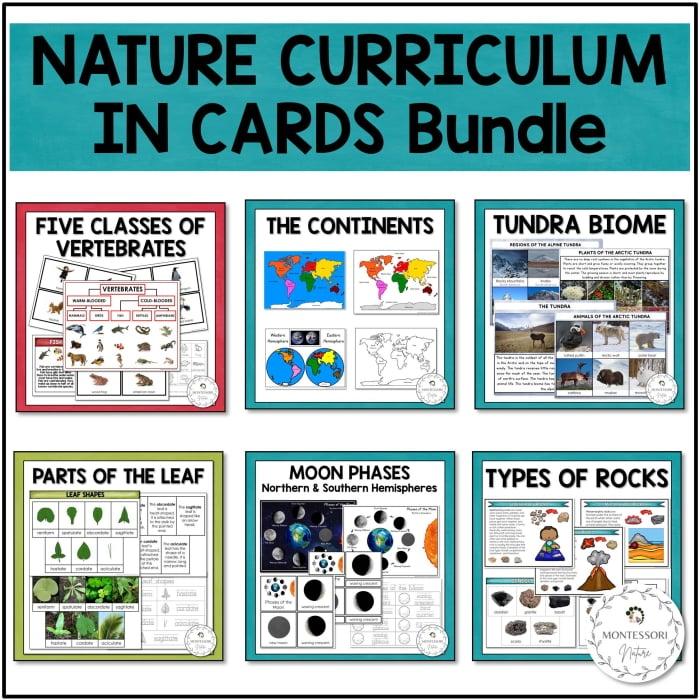 Buy the Nature Curruculum in Cards bundle