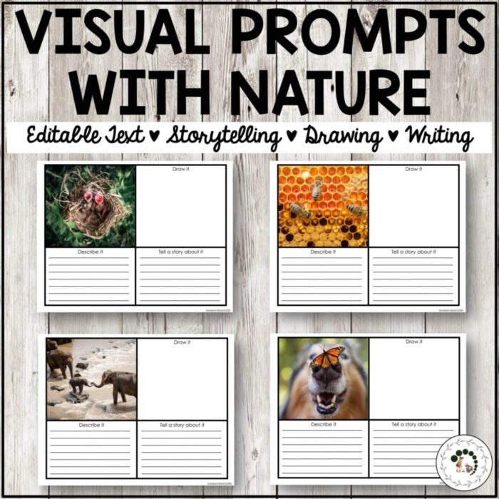 Buy visual prompts with nature printables