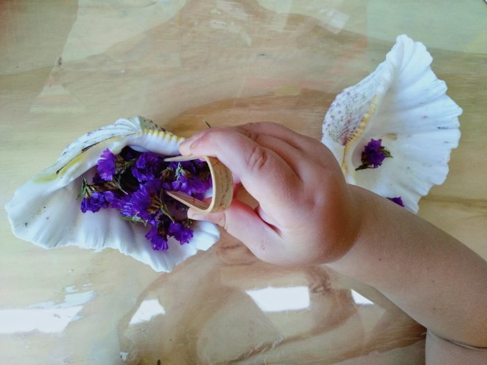 A child transferring dry flowers from one sea shell into another using tweezers