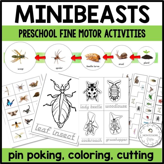 Buy Minibeasts fine motor printables