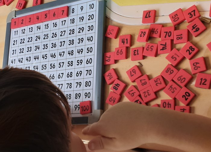 Hundred board math activity