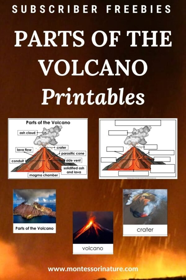 Free Printable - Parts of a volcano