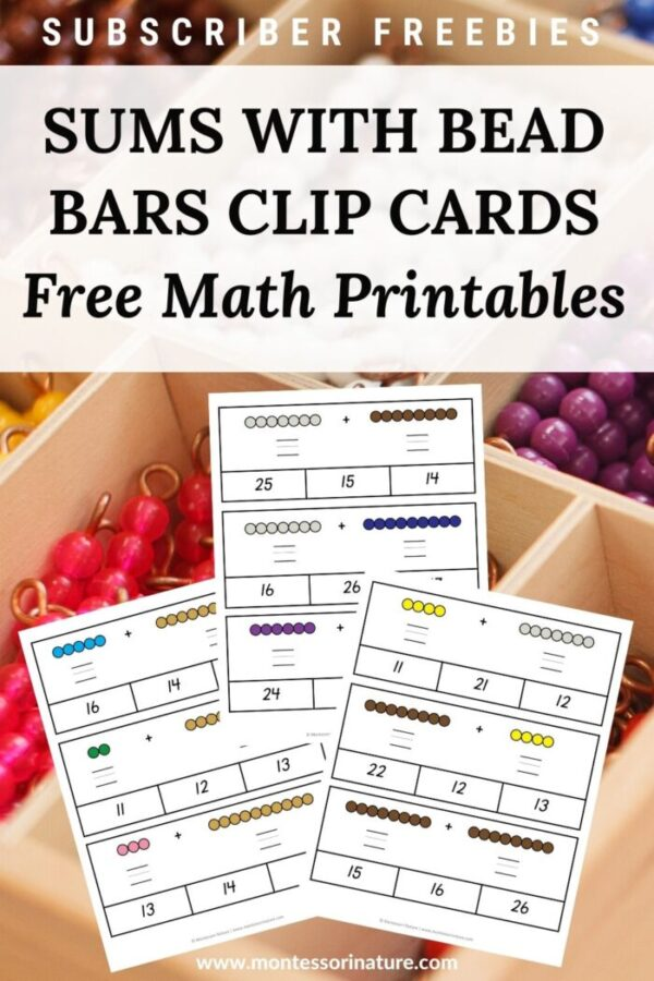 Sums with Bead Bars