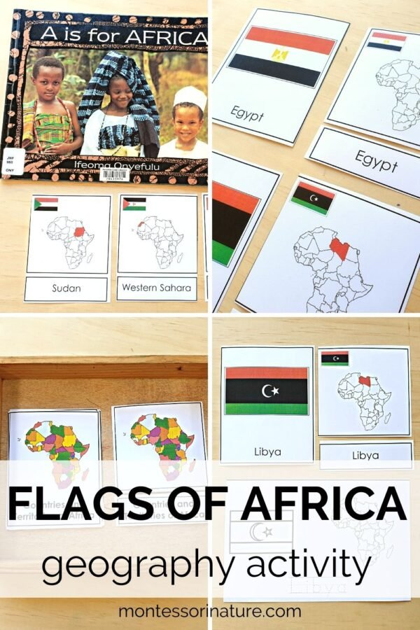Flags of Africa learning activity