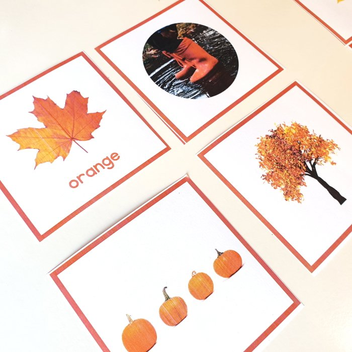 Color matching activity - fall printable for kids