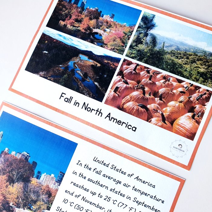 Fall around the world - fact cards