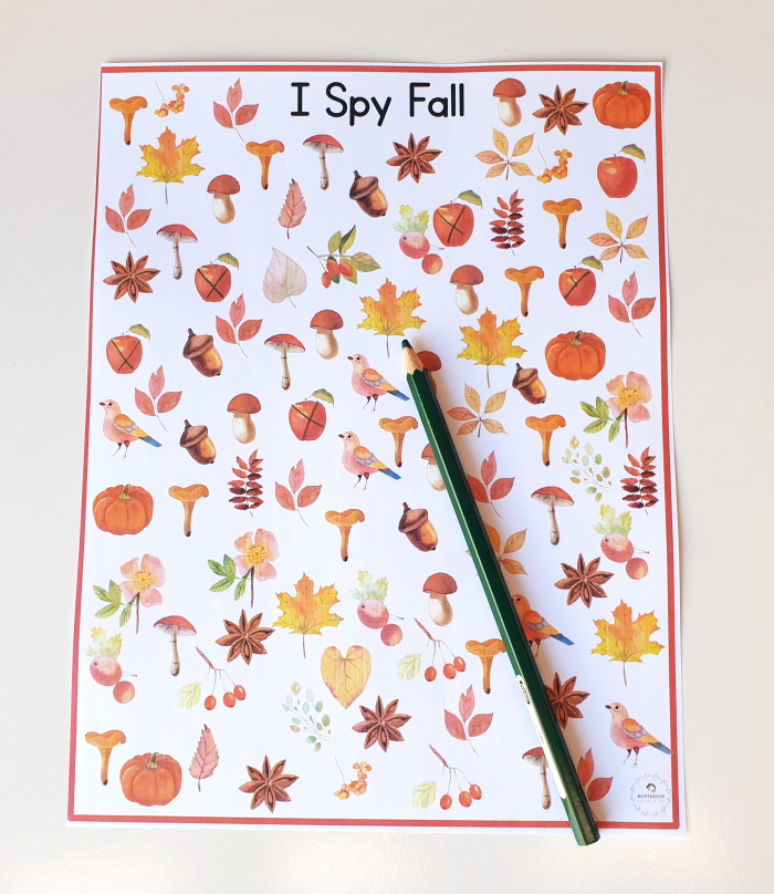 I spy activity for counting