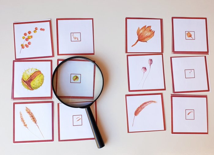 matching cards - fall printable for kids